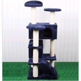 Cat Toys & Treats