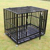 "48"" Heavy Duty Dog Crate - Professional"